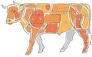 שמות חלקי הפרה והשימוש בכל אחד מהם